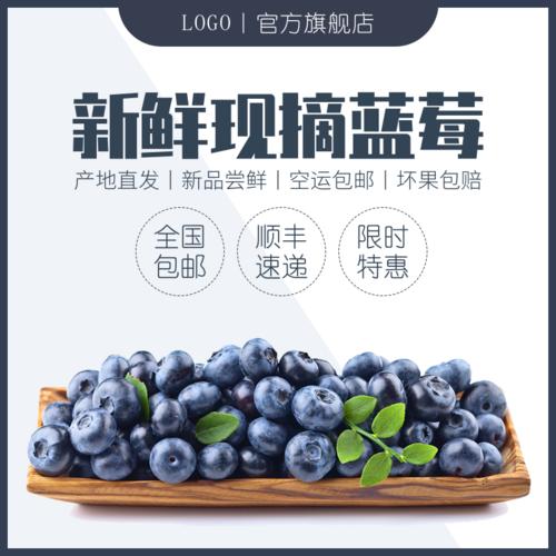 简约水果新鲜蓝莓宝贝主图