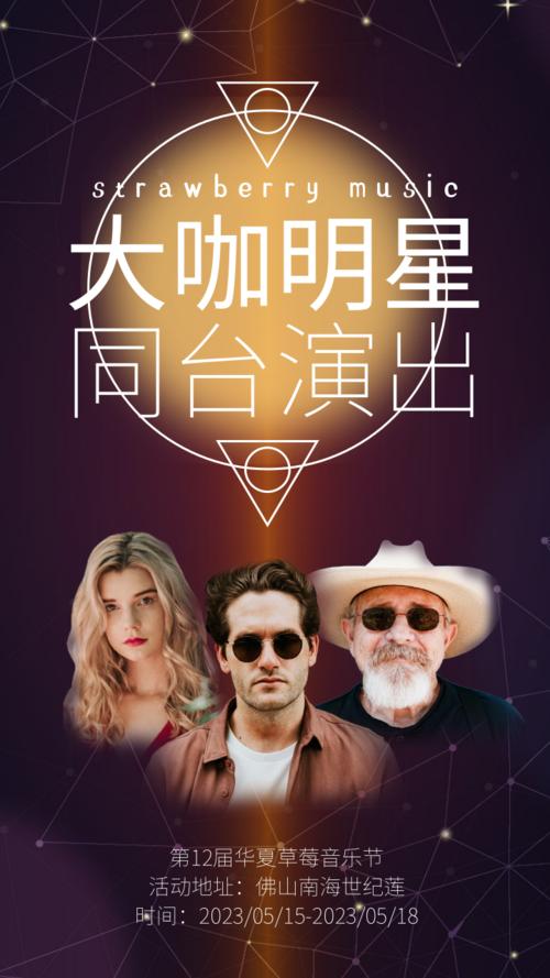 高端大气音乐节宣传手机海报